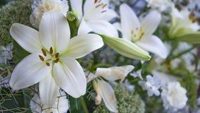Wspaniały bukiet białe leluje i goździki kwitnie Fotografia Royalty Free