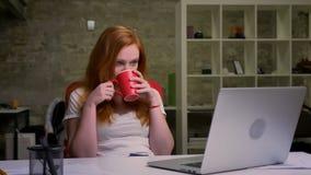 Wspaniały imbirowy caucasian bizneswoman właśnie kończył jej pracę na komputerze, siedzi spokojnie, relaksuje, pije od czerwieni