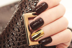 Wspaniały luksusowy brown krokodyla manicure obrazy stock