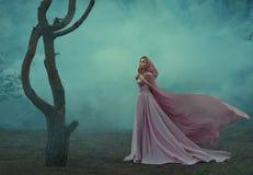 Wspaniały młody elfa princess z blondynem, ubierającym w drogiej luksusowej długiej delikatnej menchii sukni, trzyma światło fotografia stock