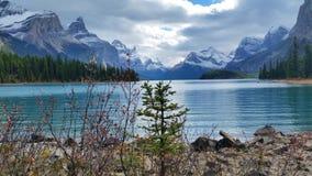 Wspaniały natura w Kanada zdjęcia stock