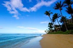 wspaniały widok na plaży Obrazy Royalty Free
