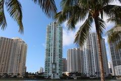 Wspaniały widok pejzaż miejski i drzewka palmowe Obraz Stock
