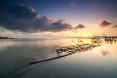 wspaniały wschodu słońca ranek Fotografia Royalty Free