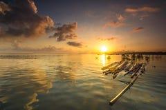 wspaniały wschodu słońca ranek Obrazy Royalty Free