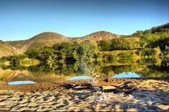 wspaniały plażowy następnym lake Fotografia Stock