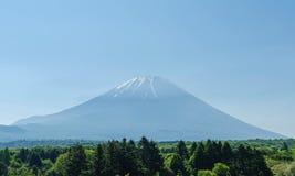 Wspina się Fuji i zielenieje drzewa w ranku przy Japan obraz royalty free