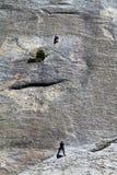 wspinaczkowa skała Zdjęcie Royalty Free