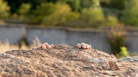 Wspinaczkowe dziecko skały Fotografia Royalty Free