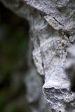 - wspinaczkowy Zdjęcia Stock