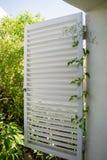 Wspinaczkowy Jaśminowy roślina kędzior otwarte okno biała żaluzja fotografia stock