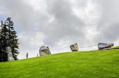 Wspinaczkowy park w Tirol Zdjęcie Stock