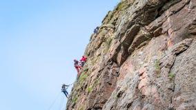 wspinaczkowych kępek rockowe arkany dwa Grupa młodzi rockowi arywiści wspina się pionowo granit skałę sport ekstremalny Zdjęcie Royalty Free