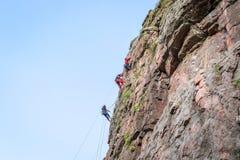 wspinaczkowych kępek rockowe arkany dwa Grupa młodzi rockowi arywiści wspina się pionowo granit skałę sport ekstremalny Zdjęcia Stock