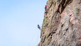 wspinaczkowych kępek rockowe arkany dwa Grupa młodzi rockowi arywiści wspina się pionowo granit skałę sport ekstremalny Fotografia Stock