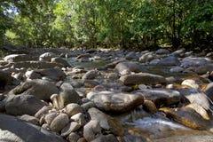 Wässern Sie in Finch Hatton-Schlucht, Queensland, Australien Stockfotos