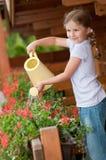 Wässernblumen des kleinen Mädchens Stockfoto