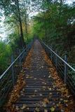 wstępujący most Obraz Royalty Free