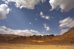 Wüste Stockbilder