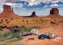 Wüstengeheimnisse Lizenzfreies Stockbild