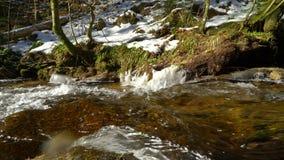 Wszystkie święty siklawy na zimie, lodzie i mrozie, BlackForest zbiory wideo