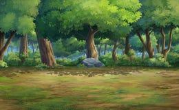 wszystkie bukowi duńscy lasowej zieleni liść zaświecają nad wiosną Fotografia Stock