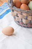 Wszystkie jajka no są w jeden koszu Fotografia Royalty Free
