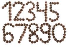 Wszystkie liczba robić sosna rożek Obraz Royalty Free