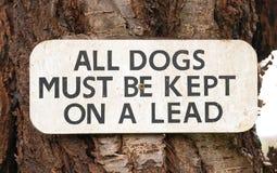 Wszystkie psy Muszą Utrzymujący Na prowadzenie znaku - podpisuje na drzewie obraz royalty free