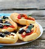 Wszystkie rodzaje mini pizze carpaccio kuchni doskonale stylu życia, jedzenie luksus włoski Fotografia Royalty Free