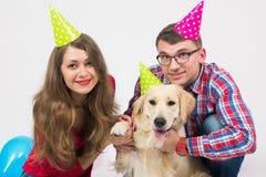 Wszystkiego najlepszego z okazji urodzin pies z ludźmi w studiu Obraz Royalty Free