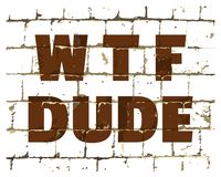 WTF Dude printed on stylized brick wall. Textured humorous inscription for your design. Vector. Illustration vector illustration