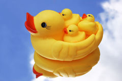 Wubber Duckies Stock Image