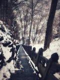 Wudang góry Antyczna droga w zimie Chiny obrazy royalty free