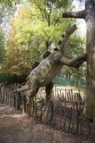 Wuerhosaurus Στοκ Φωτογραφίες