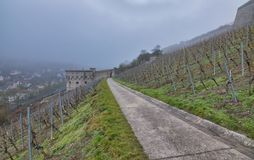 Wuerzburg Marienberg Fortress city view. Wuerzburg is a small nice city in Bavaria, Germany.  The photo is taken on a foggy day in January Stock Photo