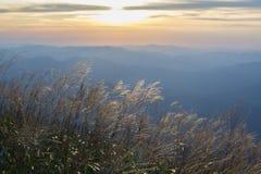 Wugong bergnationalpark i solnedgång Arkivbilder