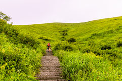 Wugongshan góra Zdjęcie Stock
