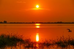 Wuhan city sunset scenery in summer royalty free stock photo