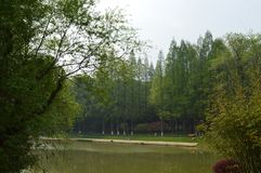 Wuhan Liberation Park. Was built in 1952. The park covers an area of 460 thousand square meters 76 thousand square meters of water, and the green space rate is Royalty Free Stock Photography
