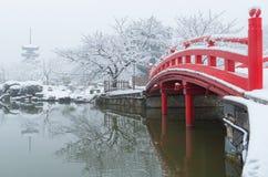 Wuhan Ostschneeszene der szenischen Stelle des sees im Winter lizenzfreie stockfotos