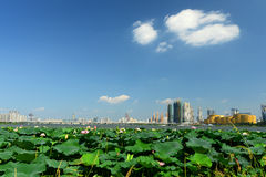 Wuhan scenery Royalty Free Stock Photography