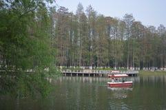 Wuhan wyzwolenia park obraz royalty free