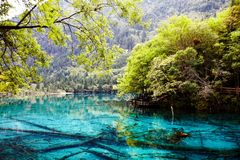 Wuhua lake Royalty Free Stock Photos