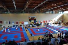 wuko карате чемпионатов европейское Стоковое Изображение