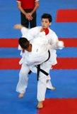 Wuko europäische Karate-Meisterschaften Stockbild