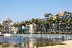Wulff城堡和palmtrees在比尼亚德尔马,智利的中心 免版税库存照片