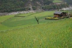 Wuli village Stock Photography