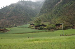 Wuli village Royalty Free Stock Images