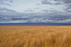 Wulkan San Pedro De Atacama zdjęcia royalty free